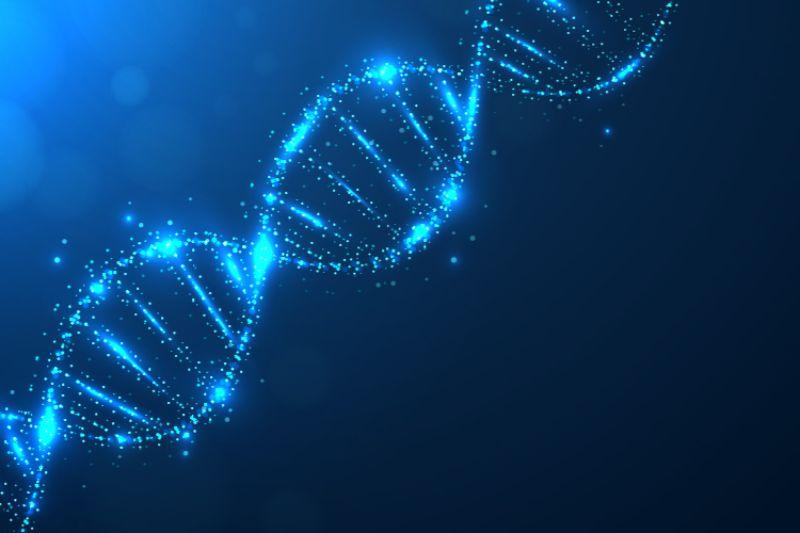 tweede chakra-DNA
