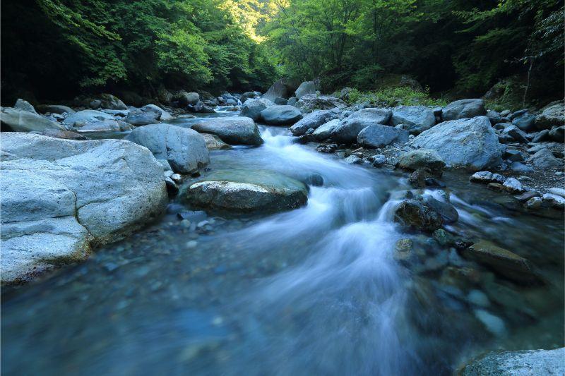 tweede-chakra-flow-water